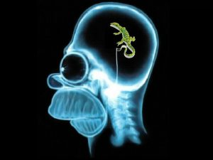 Homer Simpson's lizard brain image (large).